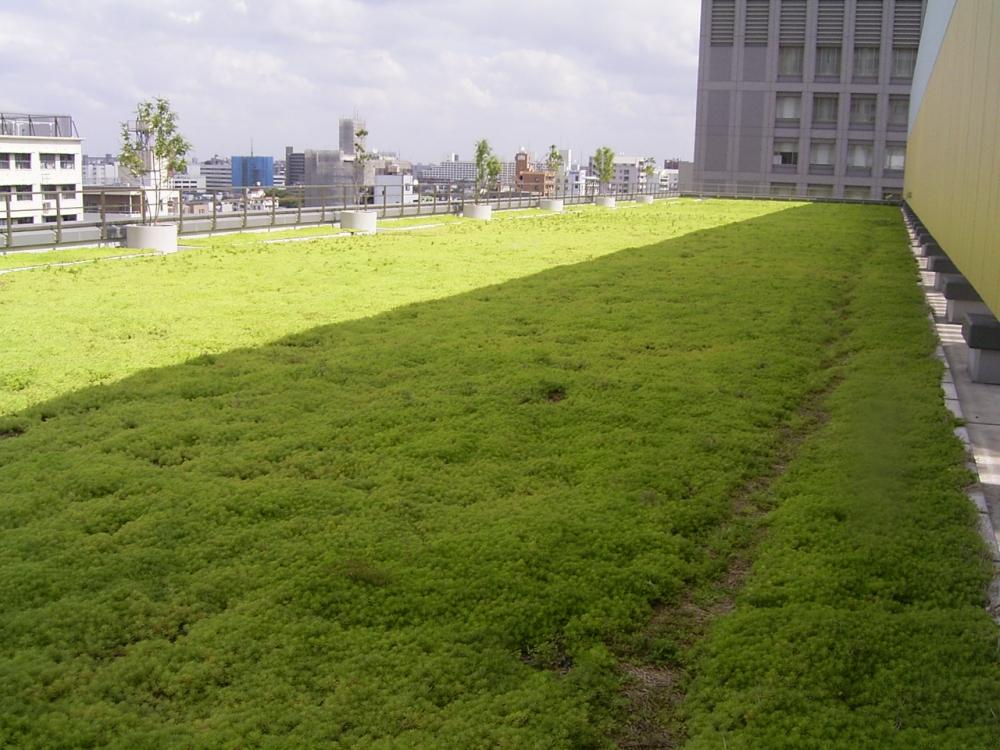 オリナス錦糸町(ショッピングモール)