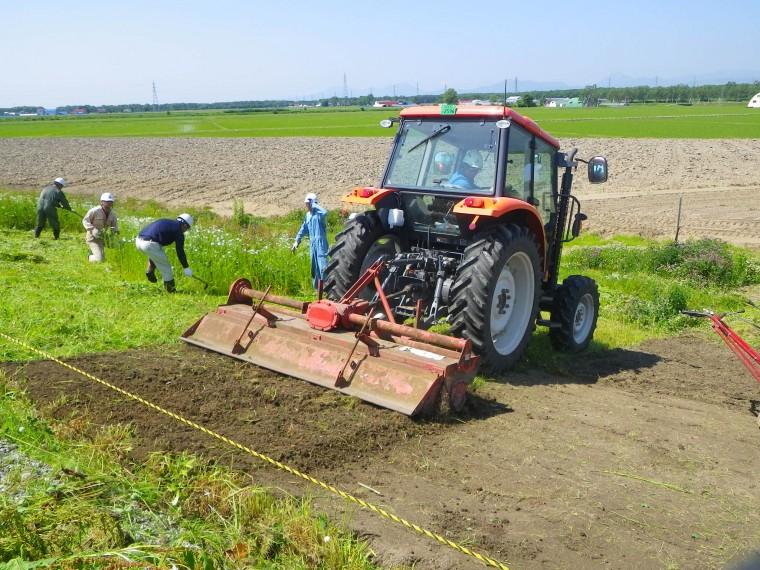 地域性種苗による法面緑化A