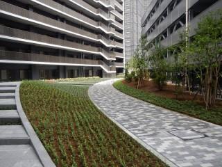 稲毛東共同住宅外構植栽工事