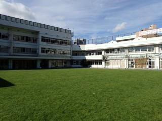 新宿区立小学校芝生維持管理