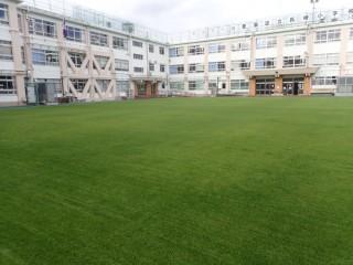 豊島区立長崎小学校校庭芝生管理
