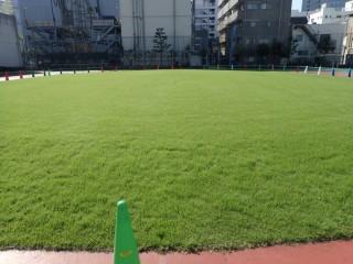 墨田区立小学校校庭芝生管理