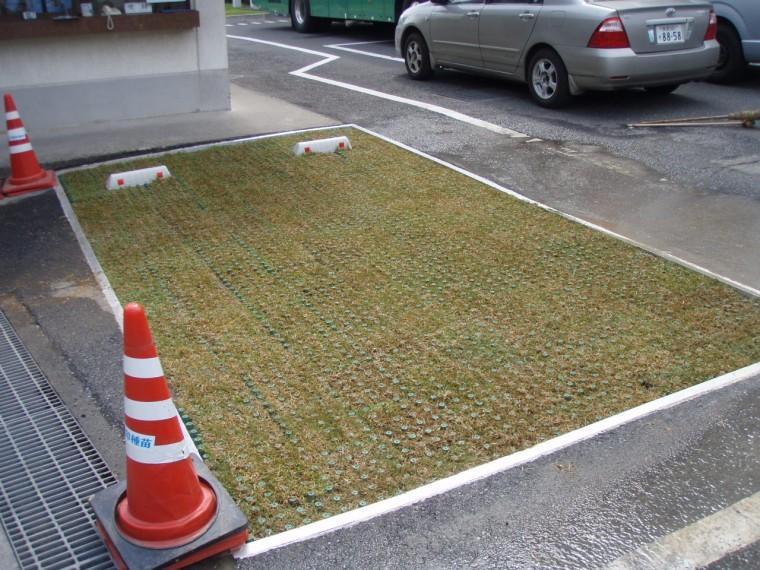 雪印メグミルク㈱川越工場駐車場緑化工事