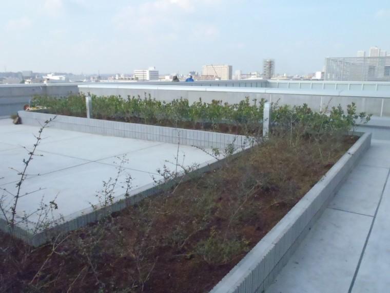 (仮称)日本電産研究所新築工事
