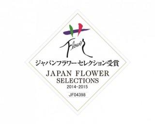 聖夜のあかりJFS受賞(2014-2015)