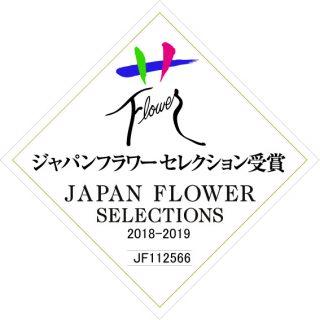 ミニオンブランシュ JFS受賞